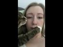 Котики - хорошие и добрые молодцы