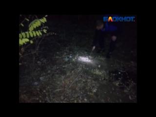 Волонтёры копают территорию, где могут быть пропавшие девушки в Волжском