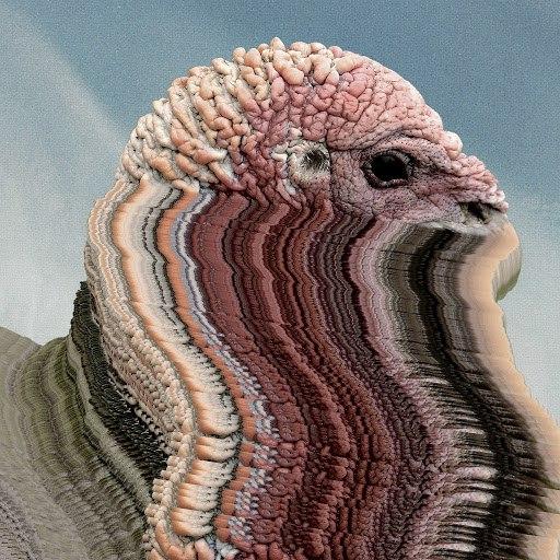 Holy Fuck альбом Bird Brains