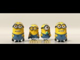 Luis Fonsi, Daddy Yankee - Despacito (Remix) ft. Justin Bieber (Minions Cover)