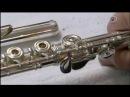 Поперечная флейта ( Из чего это сделано )