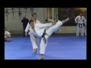 Sochin _ Masao Kagawa karate seminar