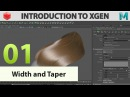 Introduction to Xgen: 01 Width and taper