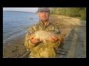 Рыбалка на Цимлянском водохранилище 02-04 сентября 2017г