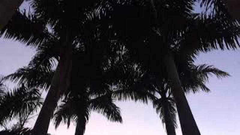 Sons: Do Amanhecer. Tiguera 360, Juiz de Fora, MG, Brasil. IMG_7053. 338,6 MB. 06h13. 24jan18. 04