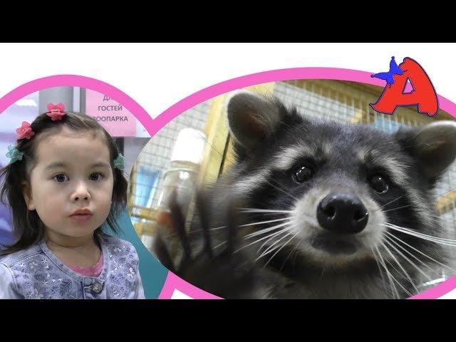ВЛОГ Контактный Зоопарк для детей. Кормим, гладим, играем с животными
