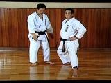 Hirokazu Kanazawa 10th Dan - Basic attitudes karate Shotokan S.K.I.F.