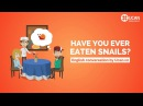 Learn English Conversation: Lesson 26. Have you ever eaten snails?