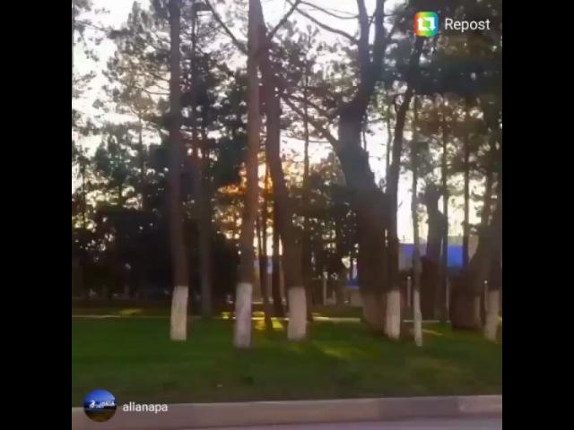 Leysanka_miss video