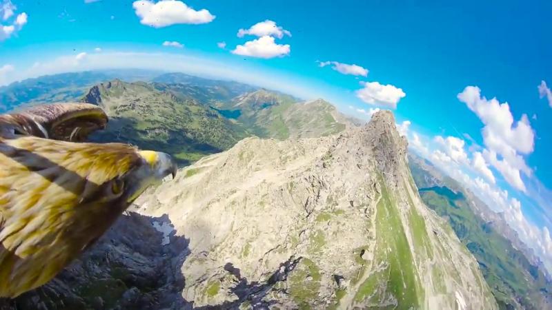 Вид на Альпы с высоты птичьего полёта