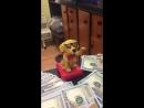 Сувенир Счастливая собака Espada E-SBD на солнечной батарее