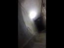 Кот в вентиляционной шахте