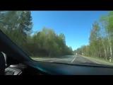 Мопс едет на своей машине с России в Украину через Беларусь или Мося-путешествен