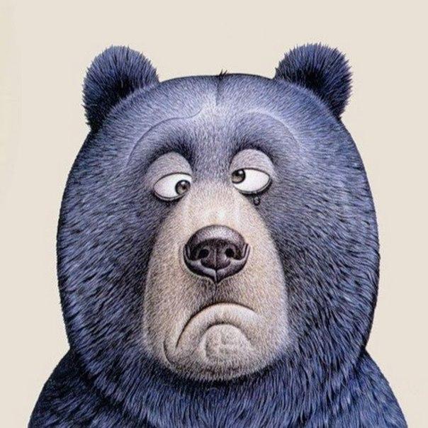 Рисунок смешной медведь