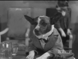 Dogville Comedy - The Two Barks Brothers 1930