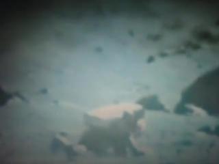 Астронавты падают на Луне