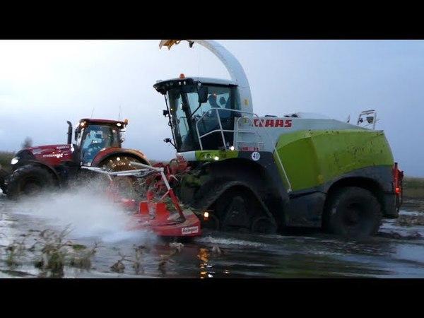 Claas Jaguar 950 Going For a Swim During Maize / Corn Chopping | Hard Work | Häckseln 2017