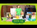 Рекомендации по хранению саженцев в красочной упаковке 3мин 50сек
