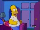 Гомер увидел измену Апу