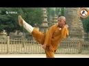 Shaolin big Buddha kung fu luohan quan, simplified forms 1-3 info