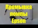 Промывка помпы принтеров Epson