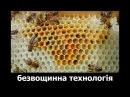 Без вощинна технологія