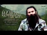NP DDD i Baja Mali Knindza - Dusko Kornjaca - (Official Audio 2015)
