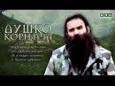 NP DDD i Baja Mali Knindza - Dusko Kornjaca - Official Audio 2015