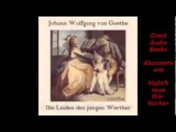 Die Leiden des jungen Werther Goethe H
