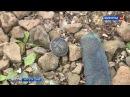 Поисковики исследуют поднятый со дна Волги бронекатер времен Сталинградской би