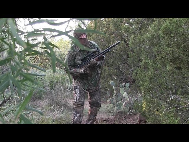 Airgun Hunting: two pigs with the Hatsan BullBoss .25 caliber air rifle