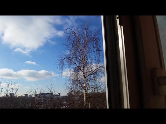 В столице солнечный полдень...прогноз от 21 2 18...С 4...
