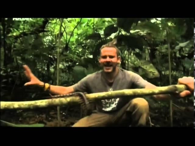 Animal Planet - Доминик Монаган и дикие существа