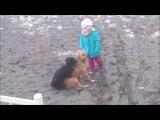 Бедная девочка и собаки в Сочи