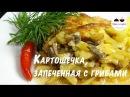 Картофель запеченный в духовке Вкуснейшая картошечка с грибами Potatoes baked in the oven