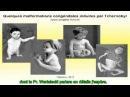 Les leçons de Tchernobyl Dr Alexey Yablokov 12 03 2013