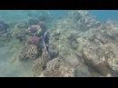 Sharm El Sheikh Ghazala Beach
