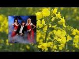 Феликс Царикати - Лучшие песни 3