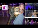 Парк развлечений Египет Шарм Эль Шейх поющие фонтаны