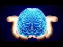 Системное мышление. Основные концепции