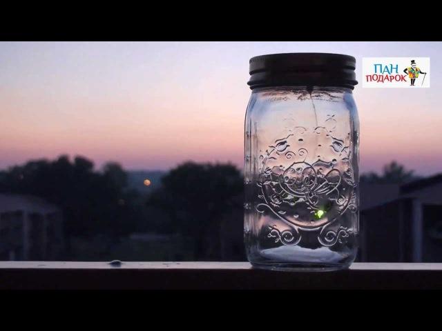 Электронный светлячок в банке «Чудесный свет»