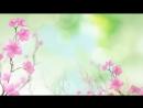 Анимация. Красивый Цветочный фон ФУТАЖ