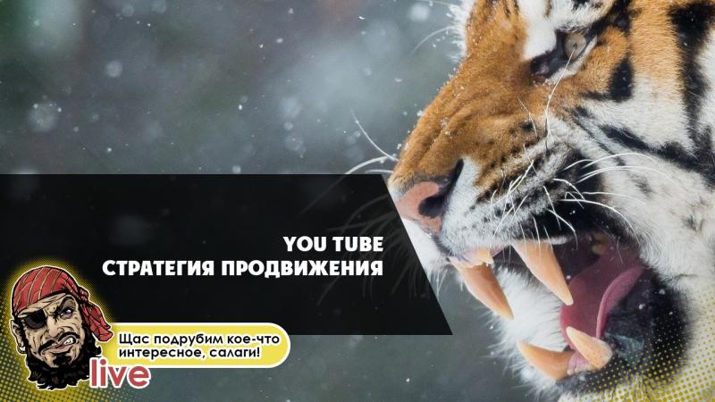 2 You Tube 2017-2018 Стратегия продвижения.