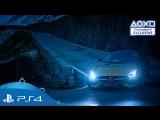 Gran Turismo Sport — дата выхода