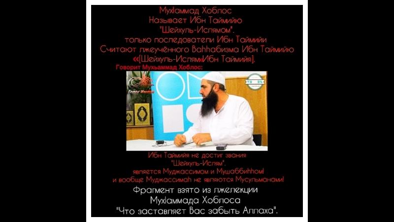 Ваххабит Хоблос называет Ибн Таймию Шейхуль Ислямом