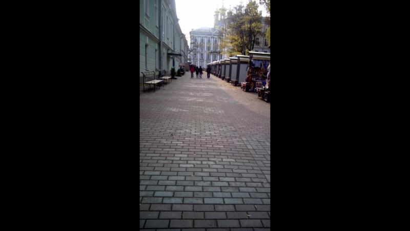 Путь брусчатки ко дворцу!))