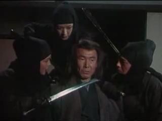 Воины-тени: Хаттори Хандзо / Фильм 3, часть 2 (реж. Eiichi Kudo / Эиити Кудо, Япония, 1982 г.)