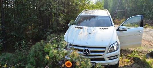 В Усть-Илимске раскрыто убийство бизнесмена спустя 4 года