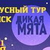 БИЛЕТЫ и автобусные туры на фестиваль ДИКАЯ МЯТА
