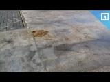Зеленый сквер превратили в бетонное поле под Рязанью